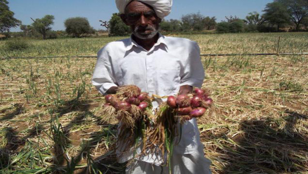 onion farmers crying