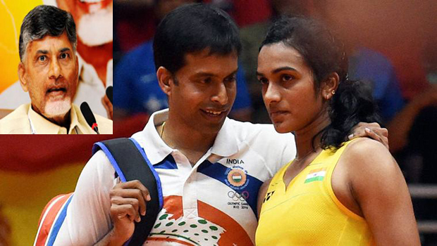 ap govt giving big offer pv sindhu