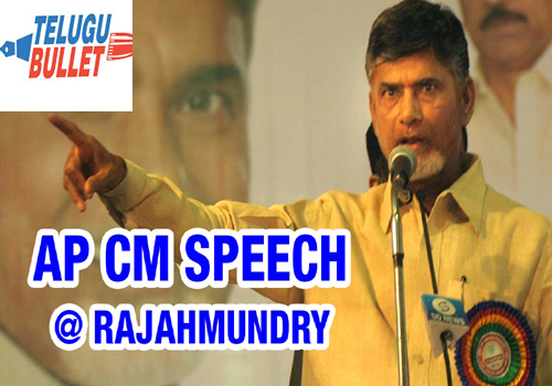 chandrababu tour rajahmundry bullet points