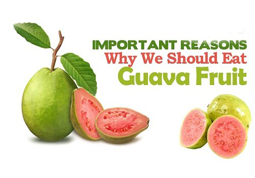guava fruit health tips