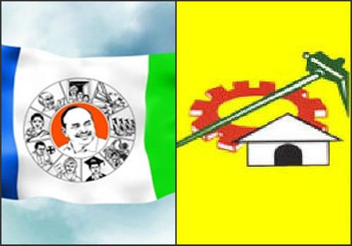 ysrcp shock too tdp over pedana municipal council elections