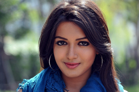 tollywood industry unofficial ban on catherine