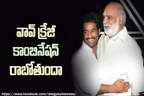 jr ntr act raghavendra rao direction movie