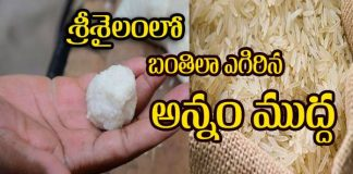 Plastic Rice Ball In Srisailam