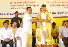 Rayapati Sambasivarao Son Honored With Garland To Chandrababu