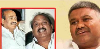 YCPR Leader Pedda Reddy Comment On JC Brothers