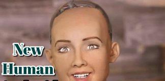 IBM Technology based Robot Sophia