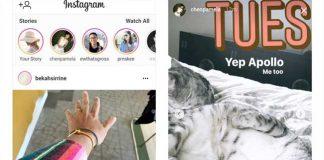 Instagram Stories in Desktop and Mobile App