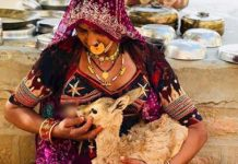 Woman breastfeeds a young deer in Rajasthan