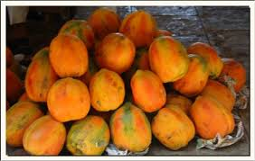 papaya fruit uses