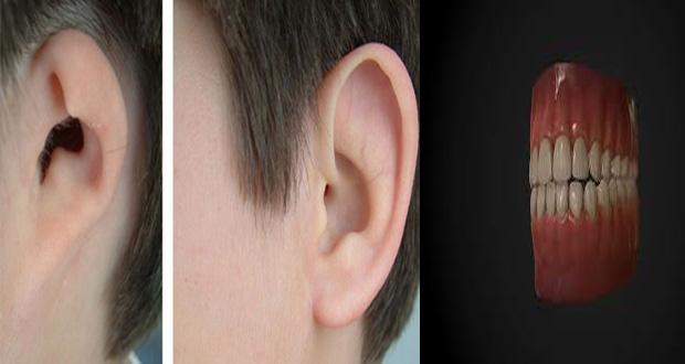 ear and teath