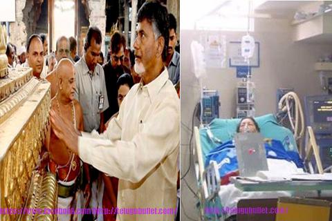 chandrababu sending tirumala prasadam jayalalitha