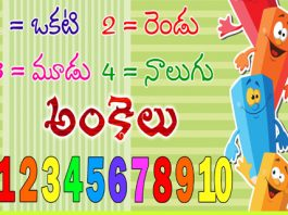 telugu numbers theory names