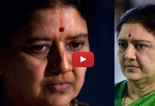 seshikala 6 years jail punishment