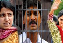 if jagan will going to jail who is the ysrcp president sharmila or bharathi