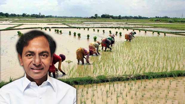 Build A Ram >> why kcr showing concern towards farmers - Telugu Bullet