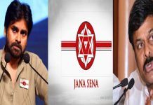 no chance for chiru come in janasena party