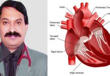 Doubts and answers on heart health