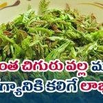 health benefits of Tamarind Leaves