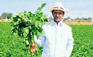Telangana CM KCR got Agriculture Leadership Award 2017