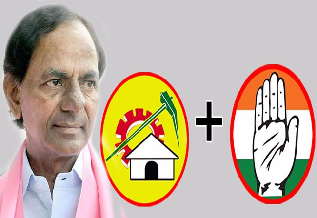 TRS Leaders Hopes TDP Strengthen