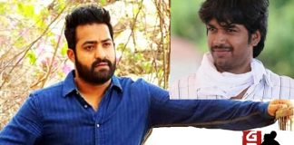 NTR reject Anil Ravipudi Raja The Great story