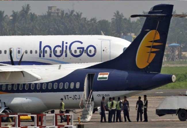 IndiGo flight hits wild boar at Visakhapatnam airport