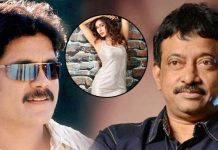 Myra Sareen Telugu Debut With Nagarjuna