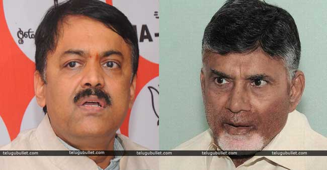 TDP MPs charged at BJP MP GVL