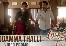 Reddamma Thalli video promo