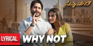 Savyasachi Lyrical Song