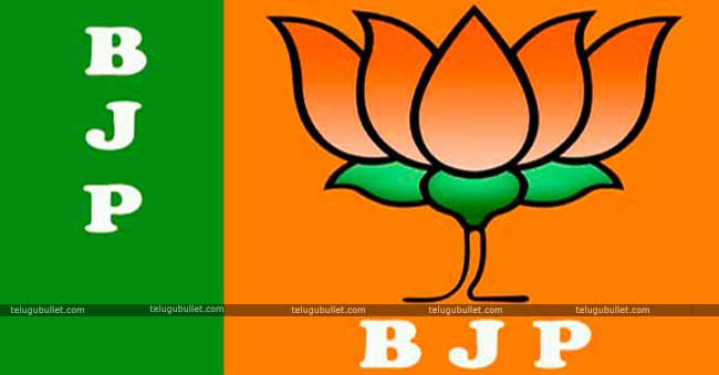 No Alliance Can Stop BJP From Realising Its Agenda Of Development