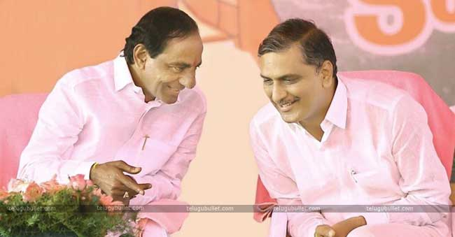 special love and care for KCR