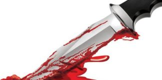 Jabalpur: Teen stabbed her pregnant sister to marry her brother-in-law