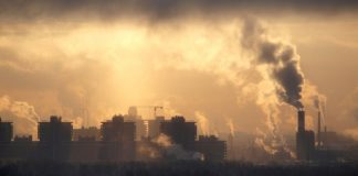 Study Confirms Link Between Air Pollution and Children's Mental Health