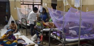 11 Doctors at Govt Hospital Test Positive for Dengue in Aurangabad
