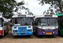 TSRTC to operate special buses for Medaram Jatara 2020