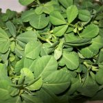 5 Reasons Why Fenugreek Leaves Should Be A Part Of Your Winter Diet