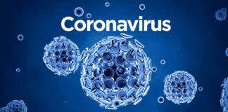 Corona Virus Cases in us