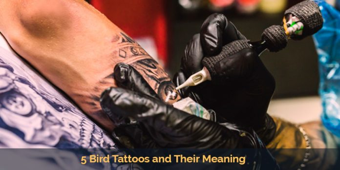 5 Bird Tattoos and Their Meaning