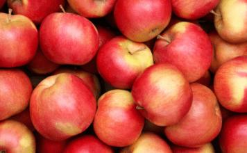 Low harvest makes Himachal apple business fruitful!