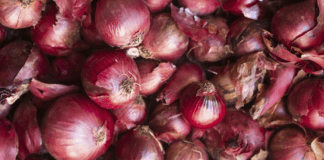 B'desh urges India to revoke ban on onion export